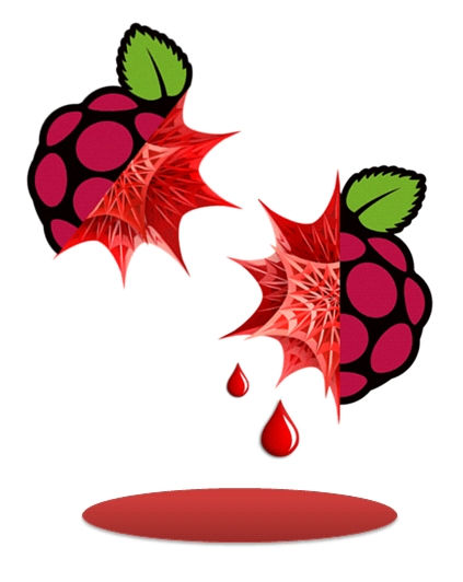 mathematica-raspberry-icona