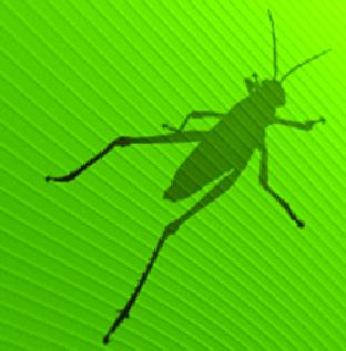 Meccanismo Complesso - Grasshopper logo