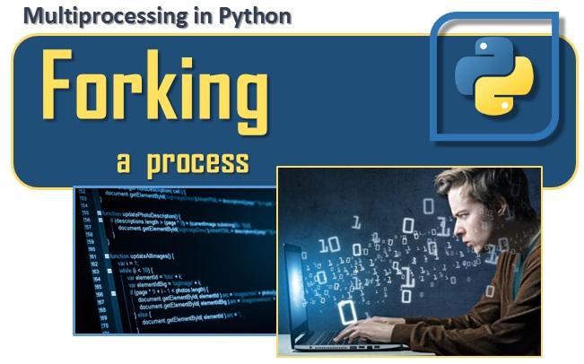 [Python] Copy-on-write when forking a python process