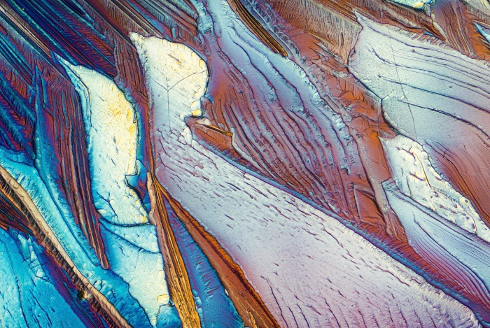Beta Alanine image of microscope by Justin Zoll
