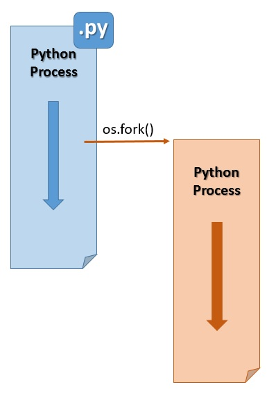 Forking multiprocessing