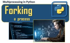 Multiprocessing con Python - Forking a process